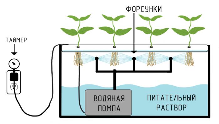 Система аэрогидропоники