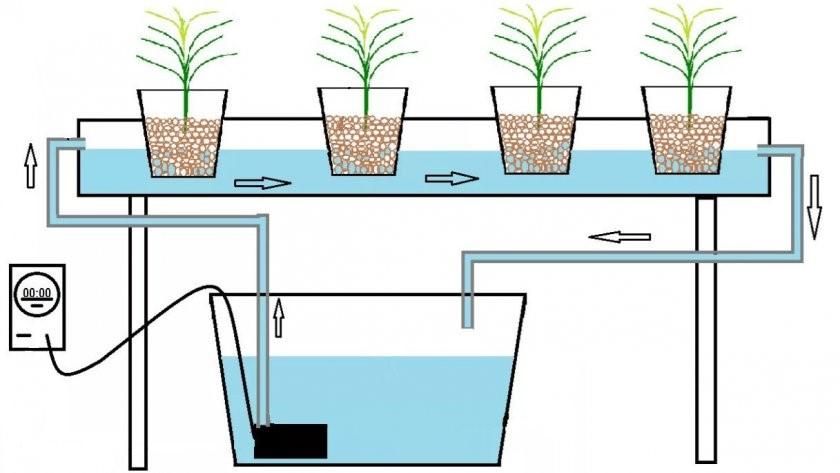 Схема устройства домашней гидропонной системы