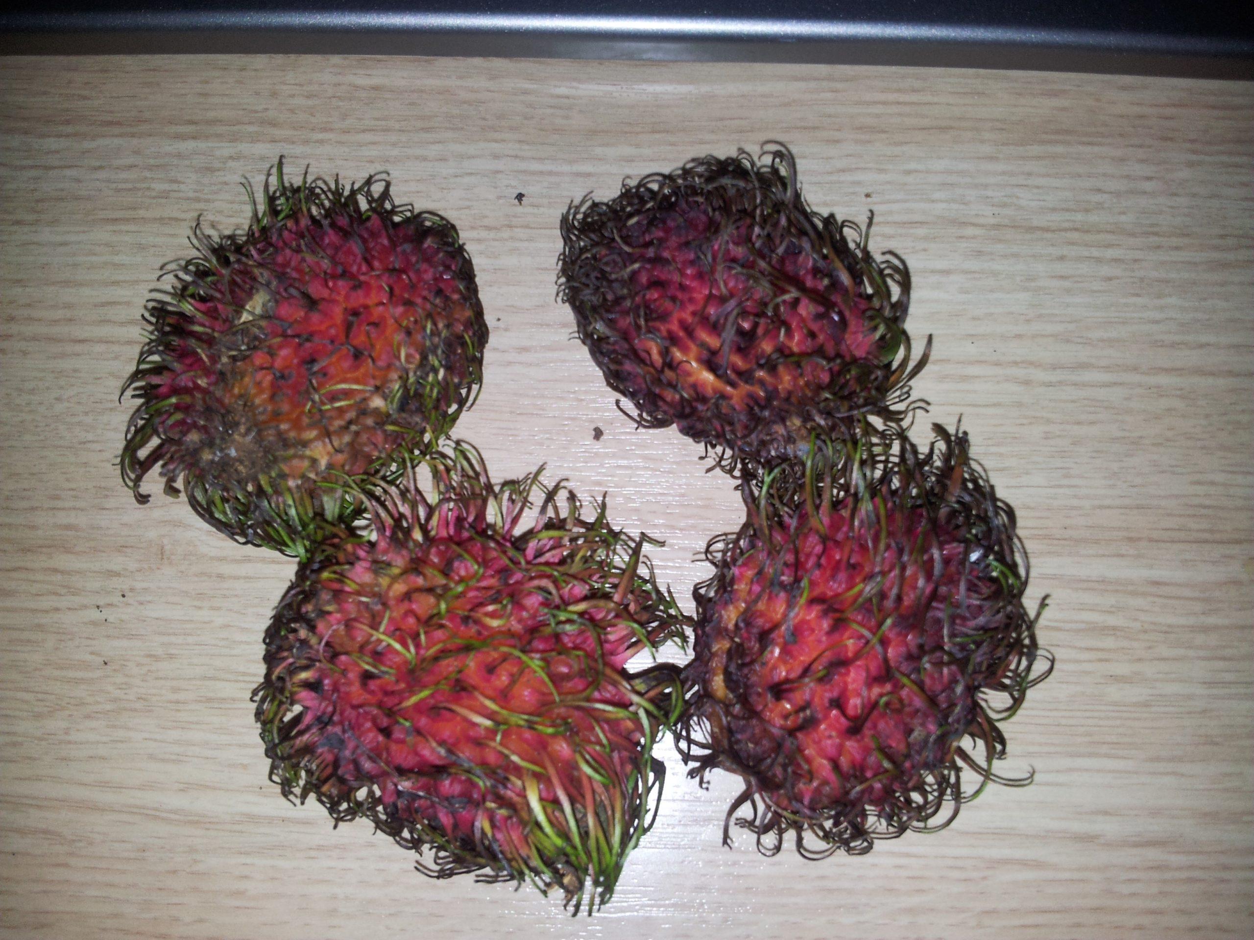Рамбутан фрукт – фото переспелых или лежалых плодов