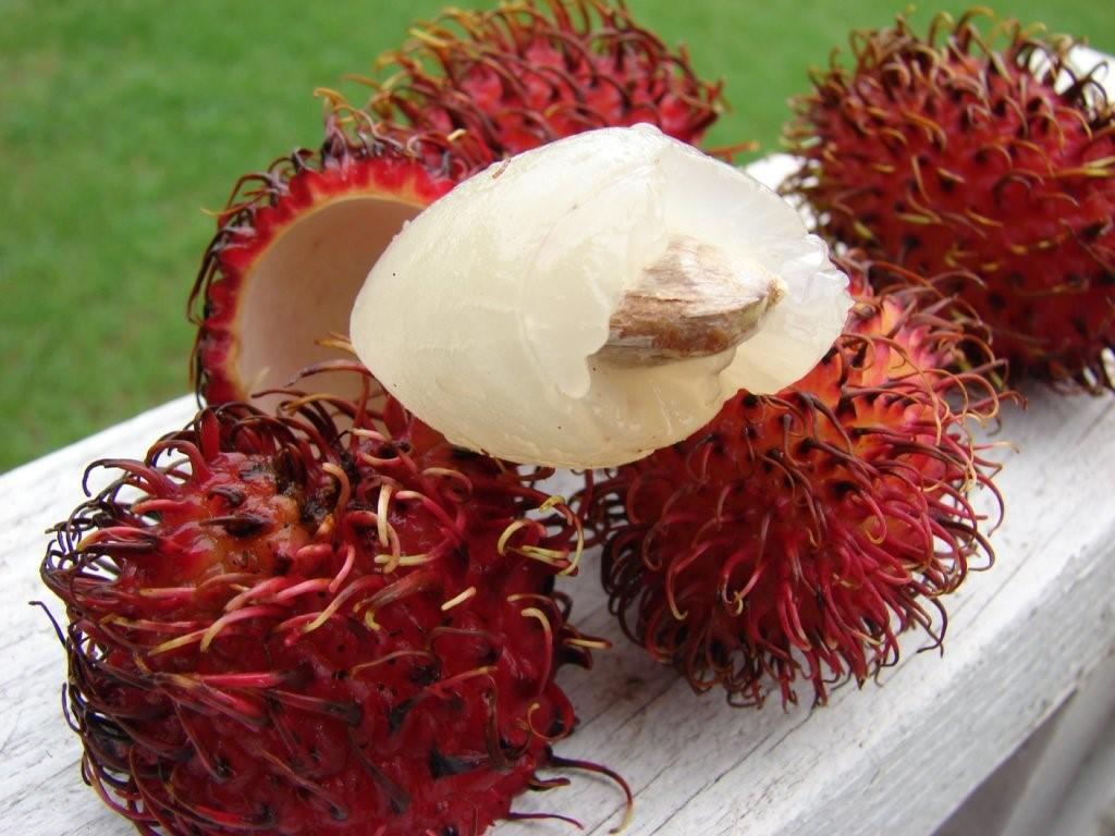 Так выглядят плоды без шкурки