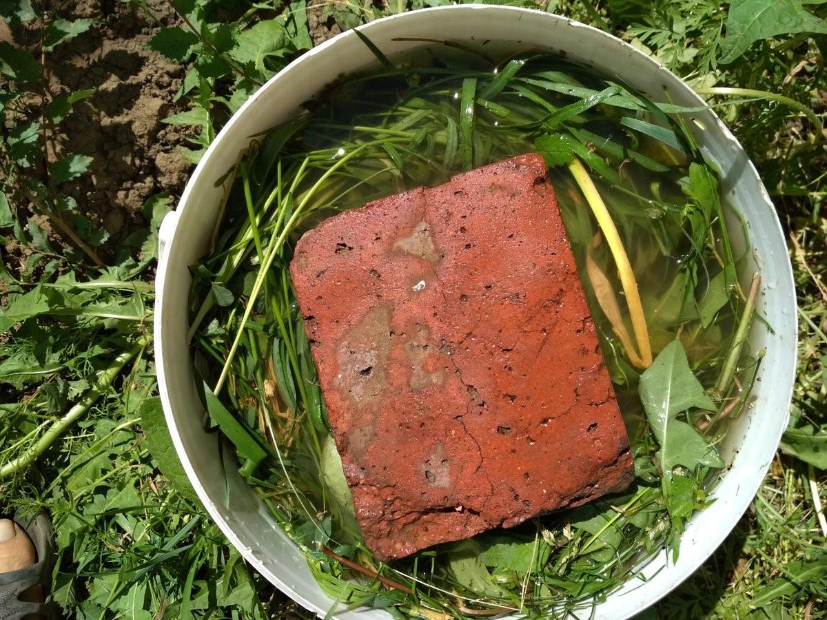 Приготовление травяного настоя