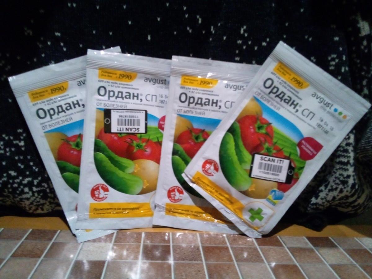 Ордан – средство от фитофтороза на овощных культурах
