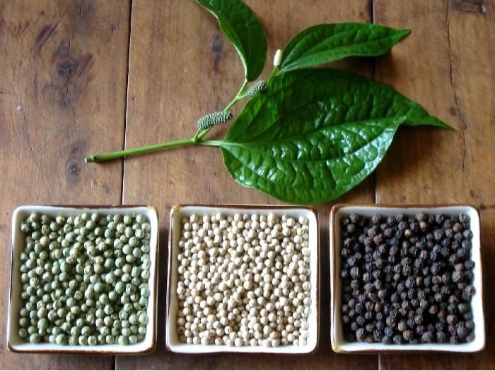 Все эти горошины – плоды одного растения