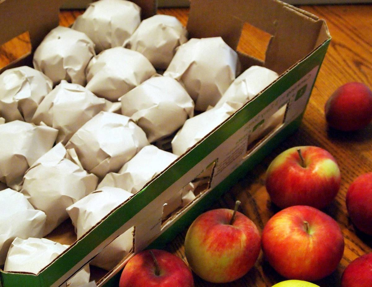 Для хранения плоды заворачивают в бумагу и убирают в прохладное помещение